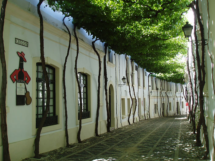 beautiful-streets-trellis-canopies jerez spanyolo