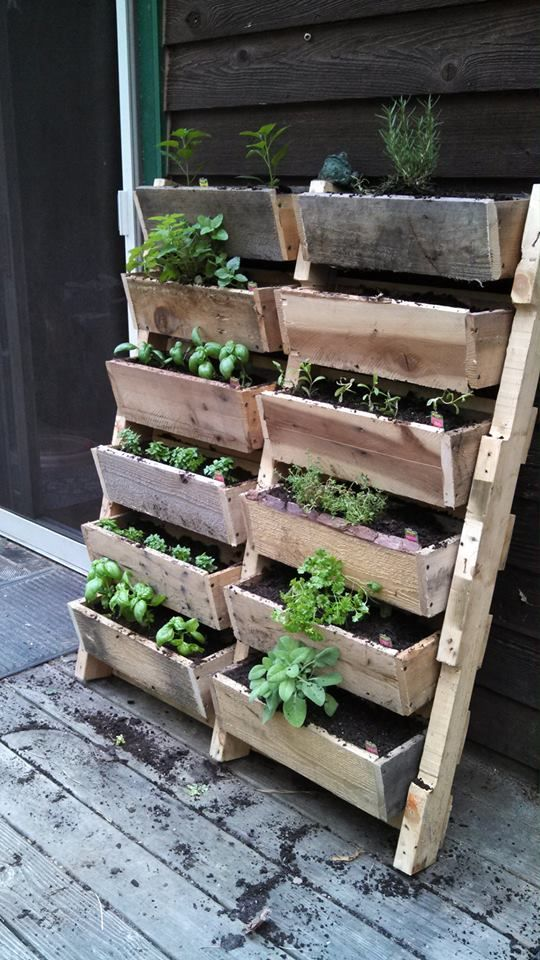 21-Outrageously-Smart-Recycled-Pallet-Crafts-That-You-Should-Try-homesthetics-decor-1