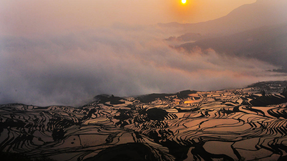 Honghe Hani Rice Terraces, China