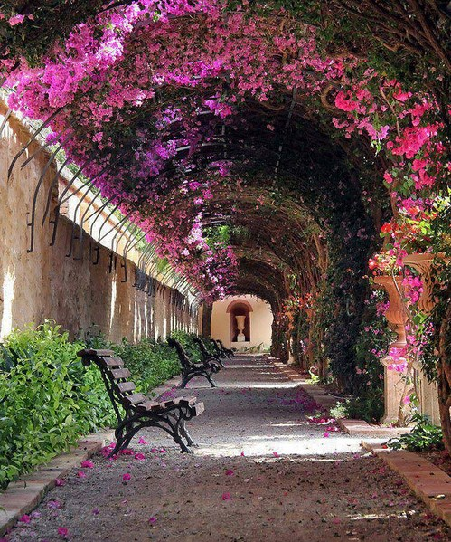 Passage-at-Jardín-de-Monforte-in-Valencia