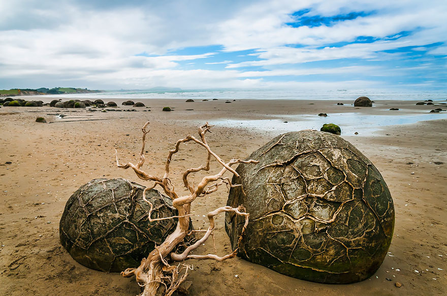 The Moeraki Boulders (Dragon Eggs) In Koekohe Beach, New Zealand