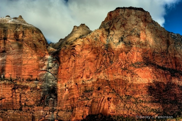 Top-10-Zion-Horse-Photo-by-Becky-J-Parkinson-740x491