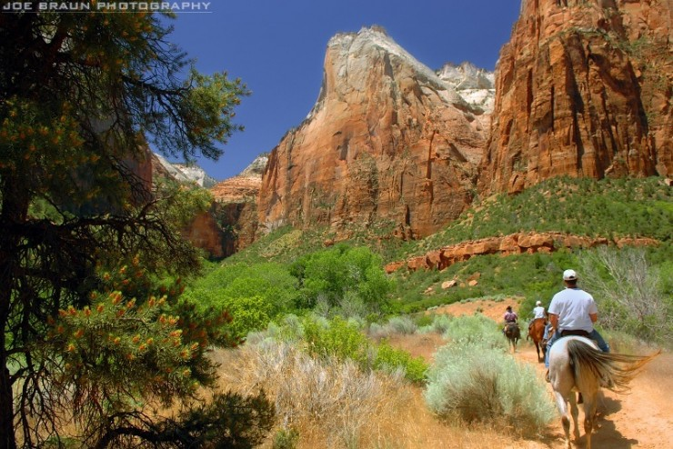 Top-10-Zion-Horse-Photo-by-Joe-Braun-740x494