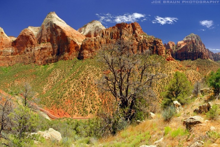 Top-10-Zion-Horse-Photo-by-Joe-Braun2-740x494