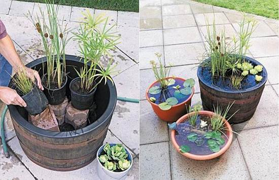 How-to-DIY-Mini-Garden-Pond-in-a-Container-3