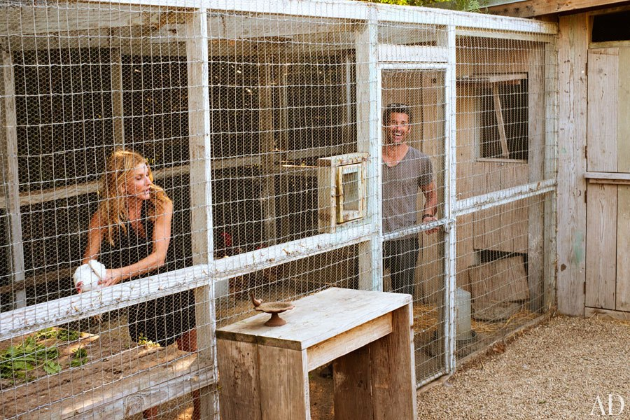 item17.rendition.slideshowHorizontal.patrick-dempsey-malibu-home-21-chicken-coop