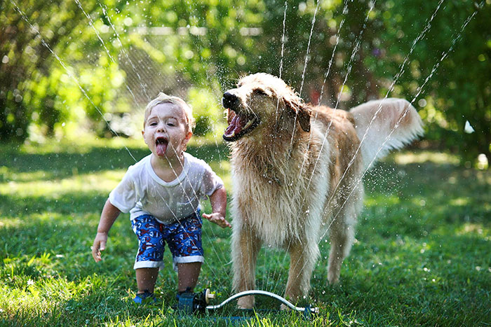 kids-with-dogs-332__700