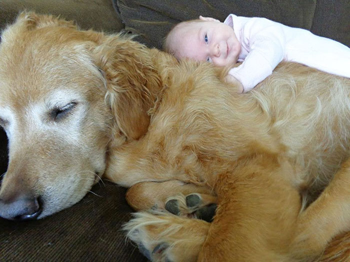 kids-with-dogs-78__700
