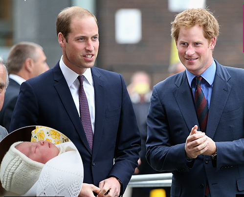 prince-harry-tells-william-he-will-train-princess-heir-lead
