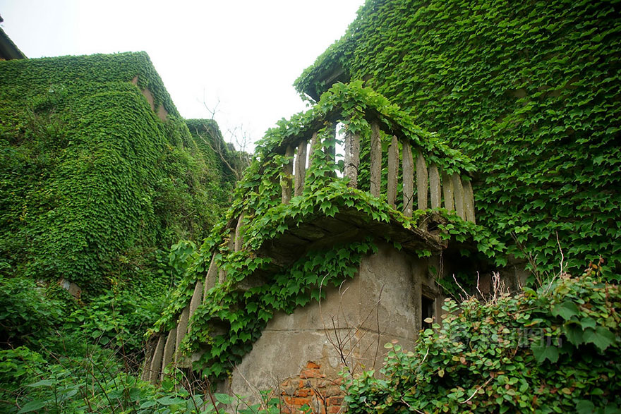 abandoned-village-zhoushan-china-107
