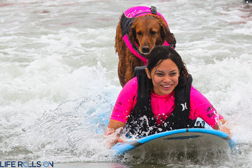 I-allowed-my-dog-to-be-who-she-truly-is-and-she-jumped-on-a-surfboard.-3__880