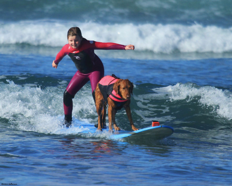 I-allowed-my-dog-to-be-who-she-truly-is-and-she-jumped-on-a-surfboard.-5__880