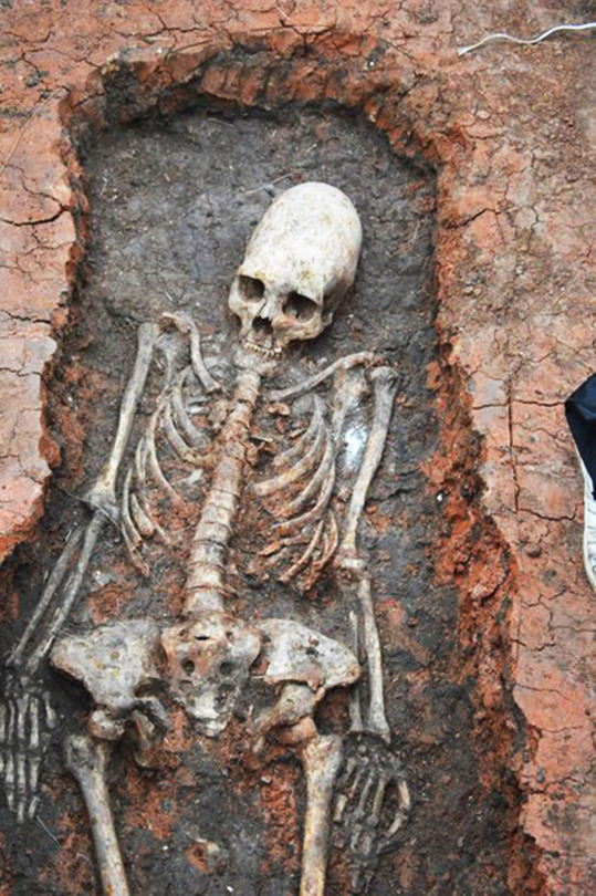 "Pic shows: The humanoid figure with the egg-shaped skull was discovered in a site known as Russia's Stonehenge. The discovery of a spectacular humanoid shape skeleton with an alien skull has sparked fresh revelations that mankind was once visited by aliens. When pictures of the humanoid figure with the egg-shaped skull from a site known as Russia's Stonehenge were first published recently, UFO watchers rushed to insist it was proof that aliens had once visited Earth. Archaeologist however insist that the skeleton which belonged to a female from a 4,000 BC settlement had a skull that was elongated because the tribe which had lived in Arkaim near the Monday city of Chelyabinsk in central Russia used to bind the head to make it grow out of shape. However UFO watchers claim that if this was the case, it was simply a way of mimicking the elongated skulls of the humans alien visitors and this proved once again of alien visitation. What is not in doubt is that the skull was significantly elongated and according to the experts belonged to a woman who was in the tribe that was part of what is now modern day Ukraine. Researcher Maria Makurova has confirmed to the Russian news agency TASS: ""We have found a well preserved skeleton. I would not exclude the possibility that the skeleton belongs to a woman from the Sarmati trible that lived in the territories of what is now modern day Ukraine, Kazakhstan and southern Russia. ""Her skull was elongated because the tribe did so by tying up the heads of their children with rope. It was clearly a tradition in the tribe."" She declined to comment on speculation it was attributed to alien visitors saying that currently they were still working on theories as to why the tribe had tradition but had nothing fixed. It is just another of the mysteries of the spectacular site known as Russia's Stonehenge which is believed was built around 4,000 BC along the same lines as the British monument from where it was possible to make studies of the stars. Indeed the Russian version if anything is more advanced because while at Stonehenge it's long been known that the monument was built with astronomical observation in mind - and where it allowed for observations of 10 astronomical phenomena using 22 elements, Arkaim allows for observations of 18 phenomena using 30 elements. This essentially means that certain events in the sky could be observed and tracked by using the site in particular ways, and from different positions, and that Arkaim offered more observable events than Stonehenge. According to Russian archaeologist K.K. Bystrushkin Stonehenge offers an observational accuracy of 10-arc minutes to a degree, whereas Arkaim offers accuracy of 1-arc minute. This precision is unheard of in the time frame allowed, and was only surpassed by that documented in the Almagest of ancient Greece some 2000 years later. This is being used as further proof that Stonehenge and Akraim were linked to beings from the stars. Scientists who exposed the photographs of the latest spectacular discovery of the alien -looking humanoid say they believe that the body was actually comparatively recent compared to the age of the site, and was probably from the second or third century after Christ. The Akraim archaeological site was discovered in 1987 and it appeared to be an important site to study Bronze Age, and since then has yielded spectacular discoveries. As well as being a primitive astronomical observatory it was also a village that was fortified by two large stone circular walls.  The settlement covers an area of some 220,000sq-ft and consists of two circles of dwellings separated by a street, with a central community square in the center. (ends)"