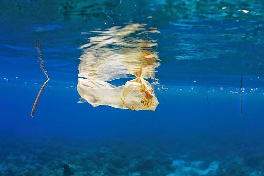 You-Will-Want-To-Recycle-Everything-After-Seeing-These-Photos-Plastic-Bag-Floating-In-The-Sea-Off-The-Philippines