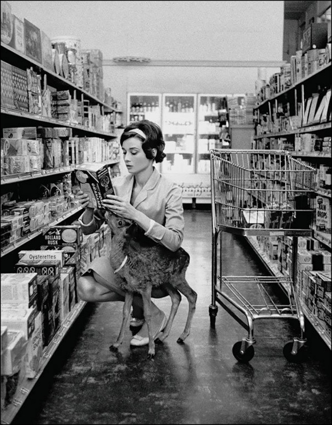 Audrey Hepburn shopping with her pet fawn, Beverly Hills, 1958.