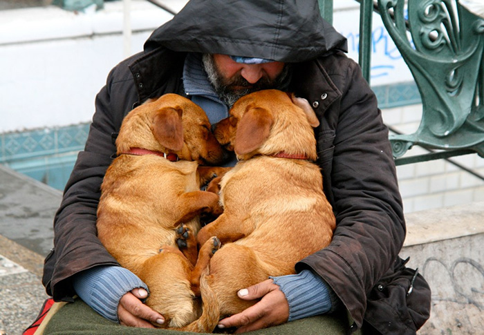 homeless-dogs-unconditional-love-best-friend-46__700
