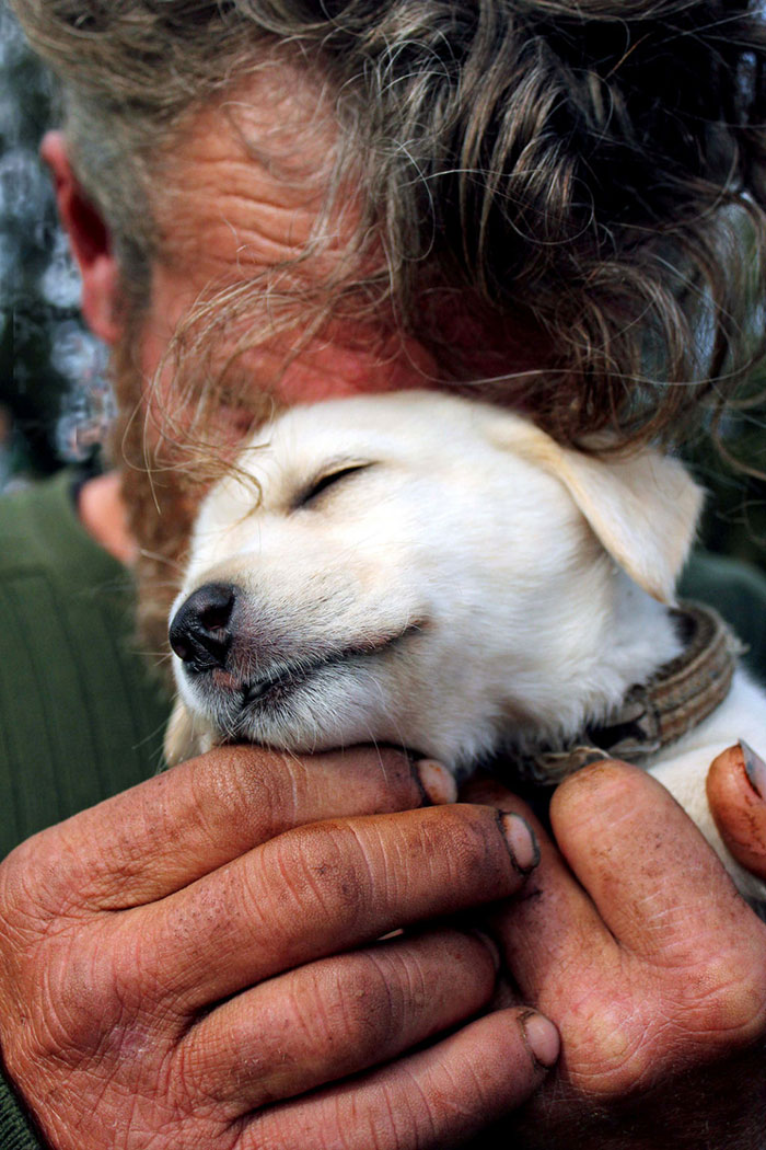 homeless-dogs-unconditional-love-best-friend-50__700