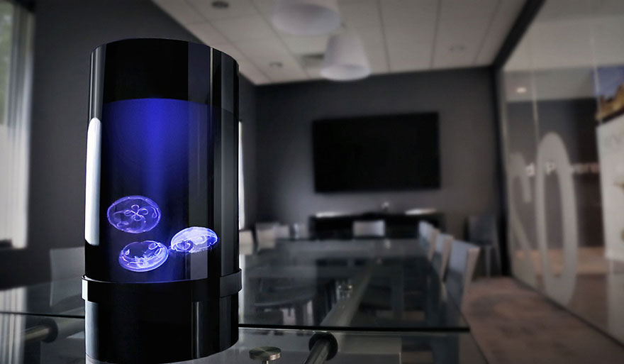 pet-jellyfish-art-led-aquarium-3