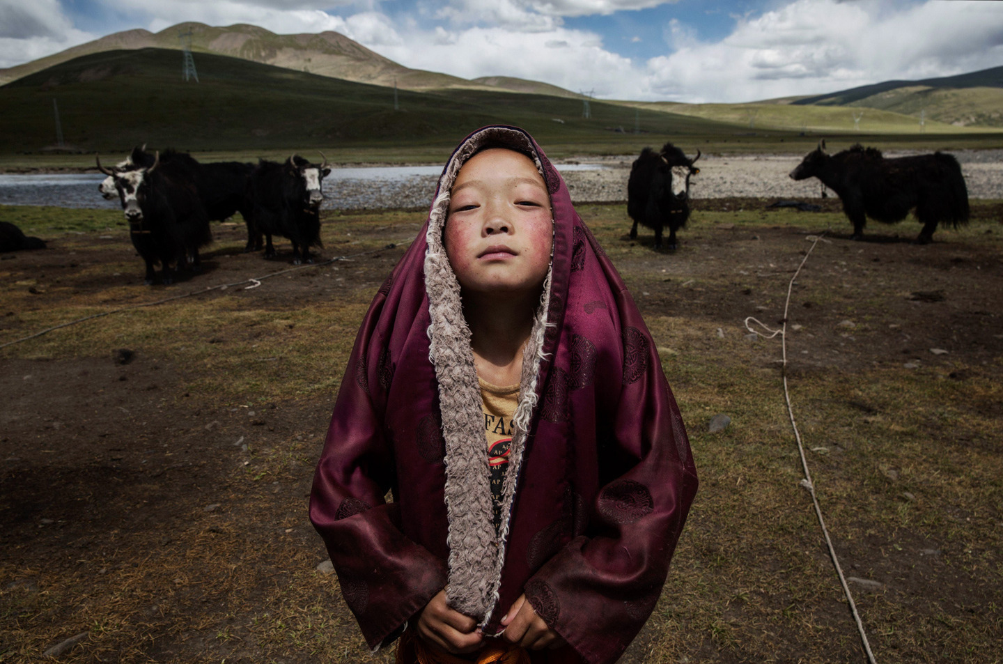 "August 5, 2015 in Yushu, China. Tibetan nomads face many challenges to their traditional way of life including political pressures, forced resettlement by China's government, climate change and rapid modernization. The Tibetan Plateau, often called ""the Roof of the World,"" is the world's highest and largest plateau."