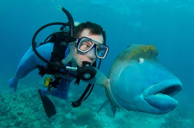While diving in Australia.