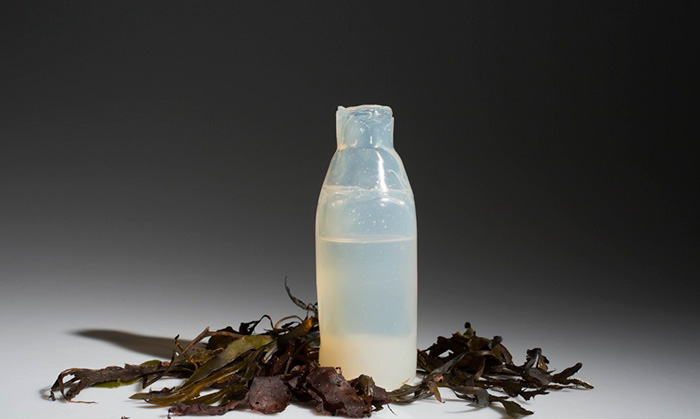 biodegradable-algae-water-bottle-ari-jonsson-2