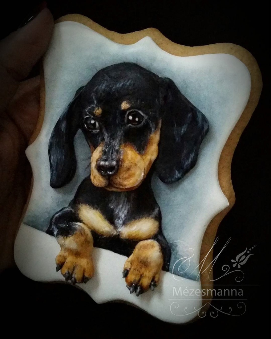 cookie-decorating-art-mezesmanna-13