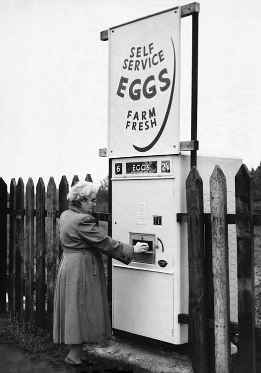 1960_derbyshire_england_uk_a_woman_collects_pre_packed_eggs_from-a