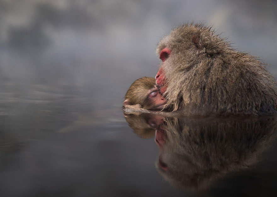 national-geographic-travel-photographer-of-the-year-contest-2016-58-572c45fa77a4c__880