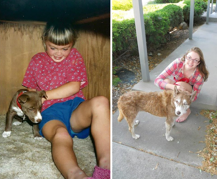 before-after-pets-growing-old-first-last-photos-37-577b9fb6a7607__700