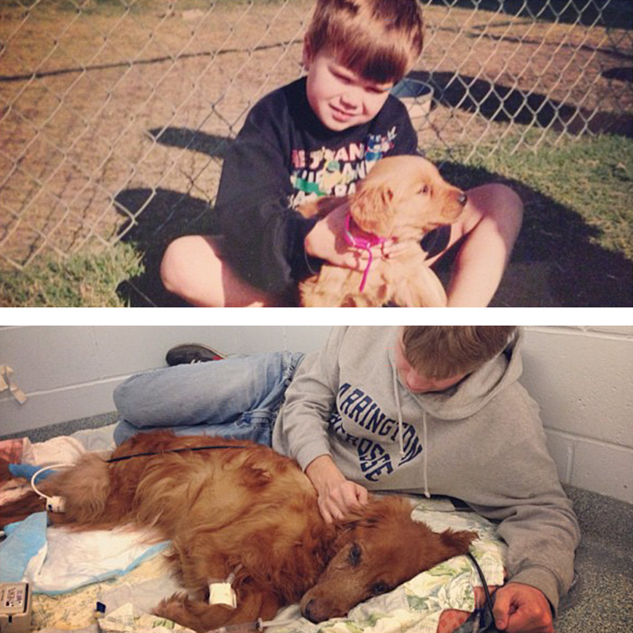 before-after-pets-growing-old-first-last-photos-45-577bad7fe2b4b__700