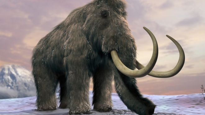 _90605265_c0205129-woolly_mammoth_artwork-spl
