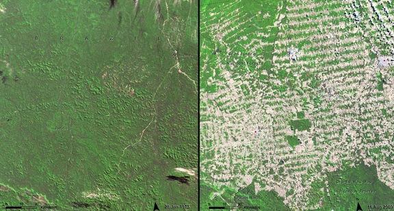 Deforestation in Rondonia, Brazil, 1975 and 2009