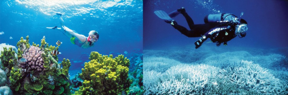 he Great Barrief Reef, 2002 and 2014