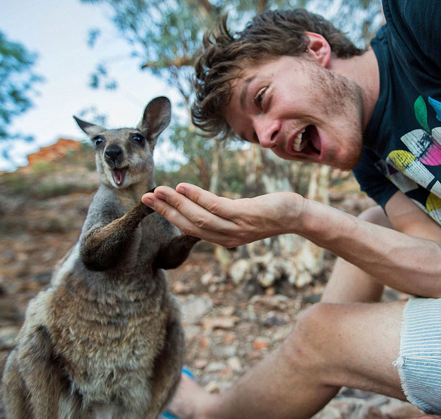 funny-animal-selfies-allan-dixon-21