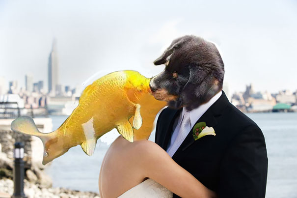 dog-kissing-fish-photoshop-battle-5-581df7fbc6ec0__605
