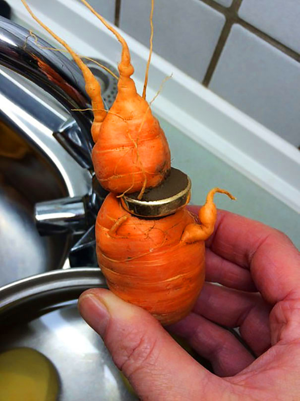lost-wedding-ring-carrot-germany-3