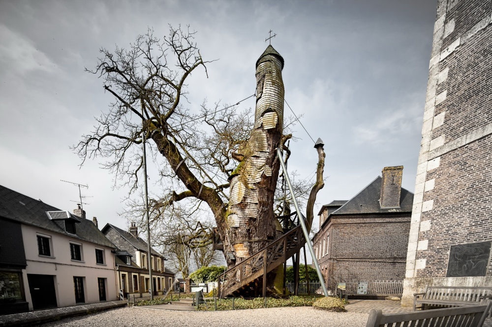 a-thousand-year-old-oak-tree-with-a-chapel-inside-france